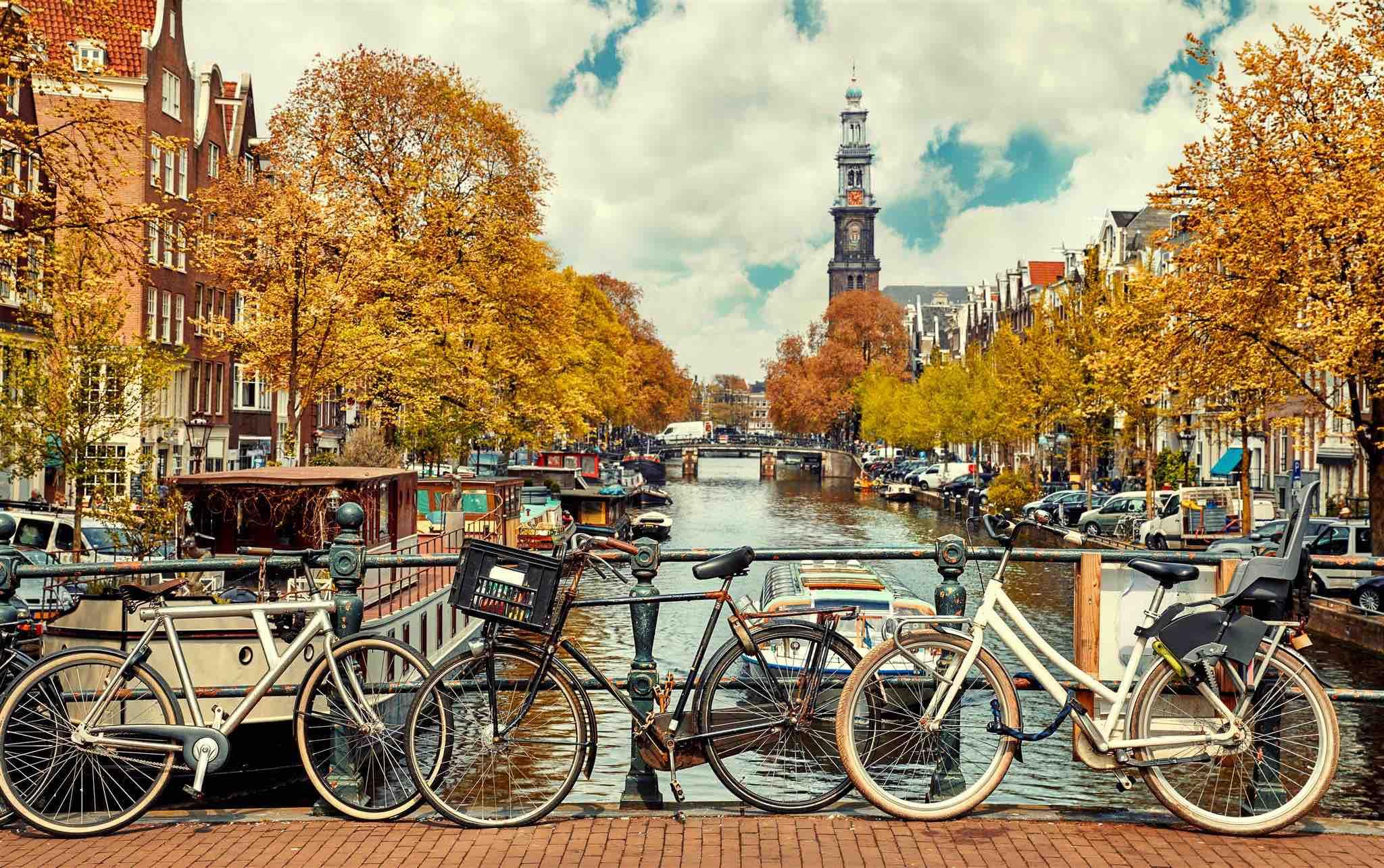 Welkom in Nederland: è amore fra il Bologna e l'Olanda