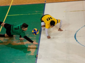 Volley Serie C: Venerdì 22 settembre primo test per la Zinella Vip